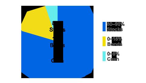 representative image of a aggressive allocation