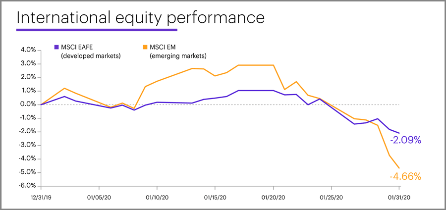 January 2020 international equity performance