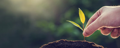 Read Now Socially Responsible Investing