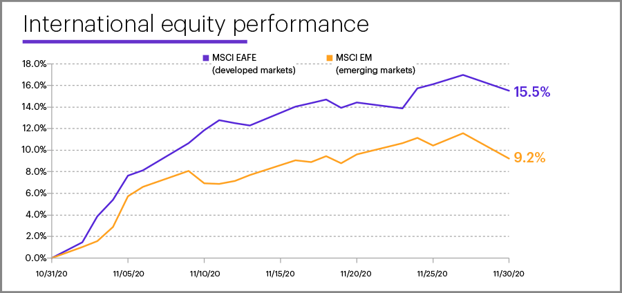 November 2020 international equity performance