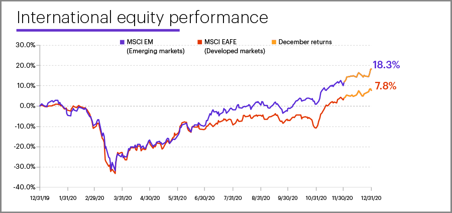 2020 international equity performance