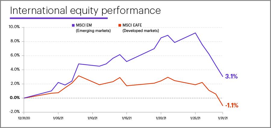 January 2021 international equity performance