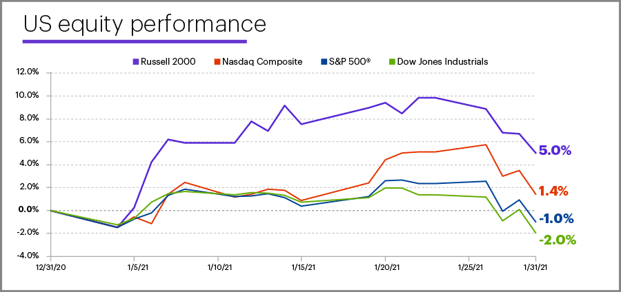 January 2021 US equity performance
