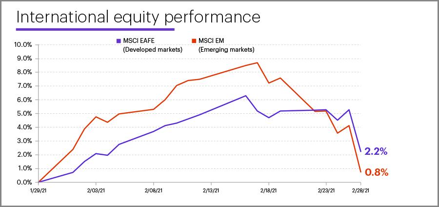 February 2021 international equity performance